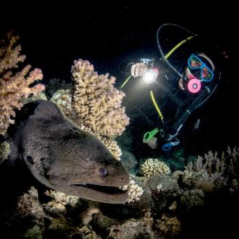 19. Scuba diving in the night and in caves